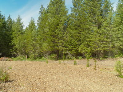 Priest River Residential Lots & Land For Sale: NNA E Settlement