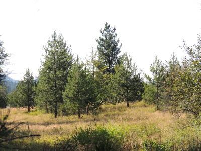 Benewah County Residential Lots & Land For Sale: NNA Finn Creek