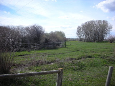 Teton County Farm For Sale: 5000 W 10500 N