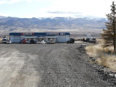 Bannock County, Bonneville County, Bingham County, Jefferson County, Madison County, Fremont County, Bear Lake County, Custer County, Power County, Teton County Commercial For Sale: 1301 S Hwy 93