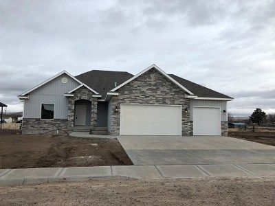 Idaho Falls Single Family Home For Sale: 3874 Copper Lane