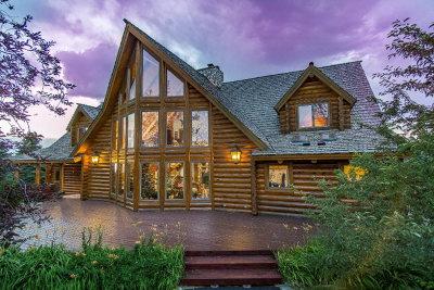 Idaho Falls Single Family Home For Sale: 789 E 65 S