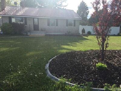 Shelley Single Family Home For Sale: 430 S Byron Avenue