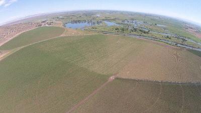 Madison County Farm For Sale: 1038 E Butte Road