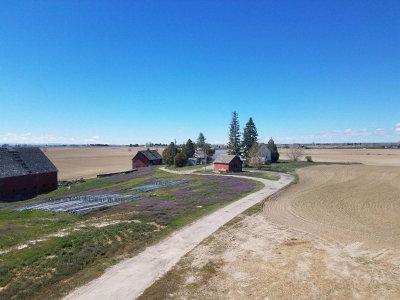 Idaho Falls Farm For Sale: 5051 Broadway