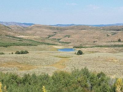 Bonneville County Farm For Sale: Tbd Mudsprings Road