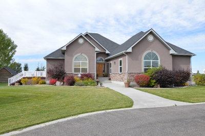 Shelley Single Family Home For Sale: 1428 N 615 E
