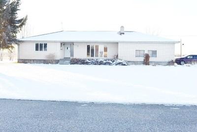 Blackfoot Single Family Home For Sale: 378 N 400 W