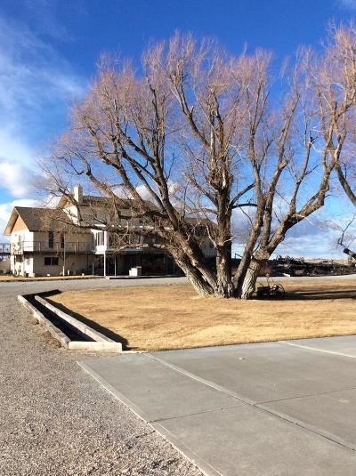 Blackfoot Single Family Home For Sale: 469 E 400 N