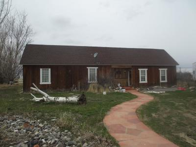 Blackfoot Single Family Home For Sale: 28 S 1000 W