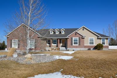 Ammon Single Family Home For Sale: 6347 E Bobwhite Drive