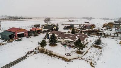 Rigby Farm For Sale: 67 & 61 N 4500 E