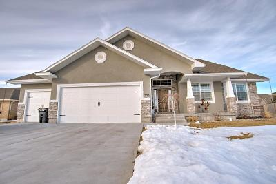 Idaho Falls Single Family Home For Sale: 220 Southpoint Blvd