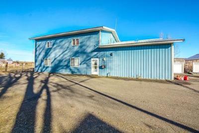 Idaho Falls Single Family Home For Sale: 9762 N 5th W