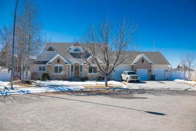 Idaho Falls Single Family Home For Sale: 253 Georgetown Court