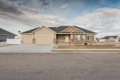 Ammon Single Family Home For Sale: 1300 Robins Avenue