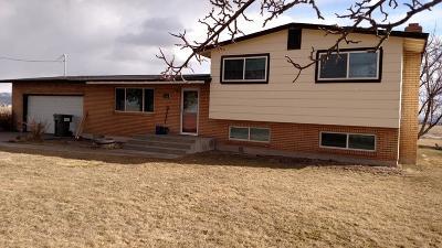 Shelley Single Family Home For Sale: 849 E 1500 N
