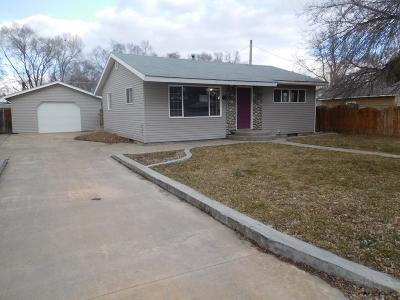 Blackfoot Single Family Home For Sale: 80 Johnson Street