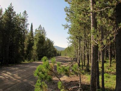 Island Park Residential Lots & Land For Sale: 4498 Shadow Ridge