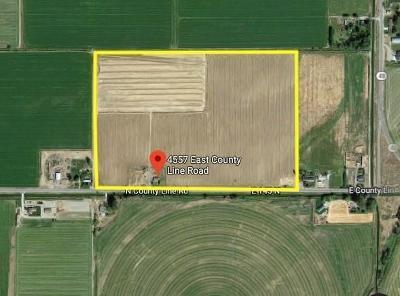 Rigby Farm For Sale: 4557 E County Line Road