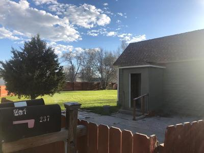 Blackfoot Single Family Home For Sale: 297 Amherst Circle