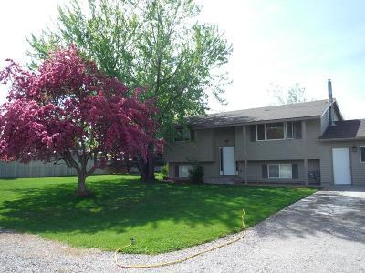Blackfoot Single Family Home For Sale: 689 W 175 N
