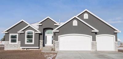 Idaho Falls Single Family Home For Sale: 396 Firethorn Drive
