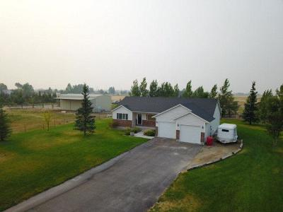 Rigby Single Family Home For Sale: 3984 E 100 N