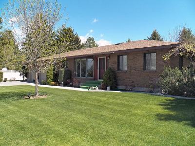 Blackfoot Single Family Home For Sale: 1545 York Drive
