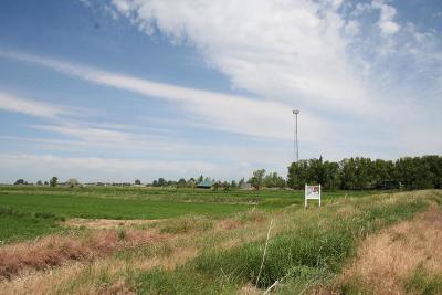 Bonneville County Farm For Sale: Tbd N 115 E