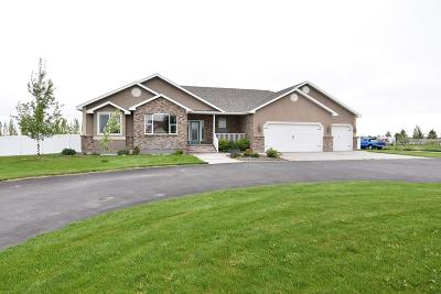 Rigby Single Family Home For Sale: 3823 E 137 N