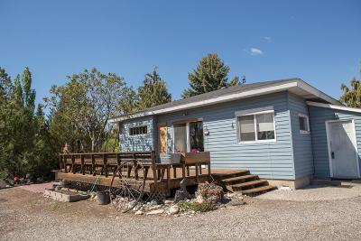 Shelley Single Family Home For Sale: 718 E 1400 N
