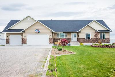 Rigby Single Family Home For Sale: 123 N 4080 E