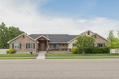 Ammon Single Family Home For Sale: 3779 E Clearfield Lane