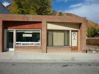 Custer County Commercial For Sale: 424 E Main Street