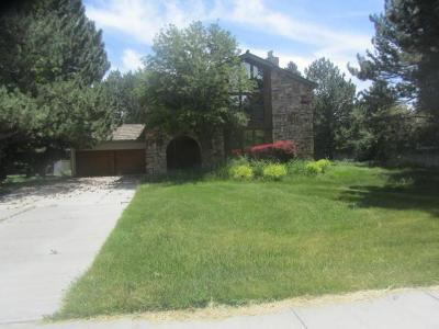 Blackfoot Single Family Home For Sale: 1375 York Drive