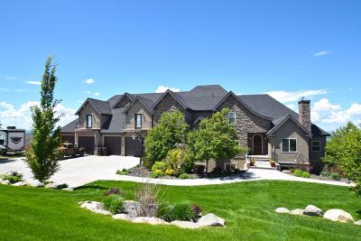 Idaho Falls Single Family Home For Sale: 6115 Sagewood Drive
