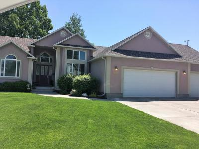 Idaho Falls Single Family Home For Sale: 2625 Lone Pine Drive