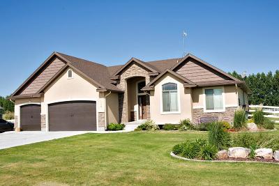 Blackfoot Single Family Home For Sale: 170 W 265 N