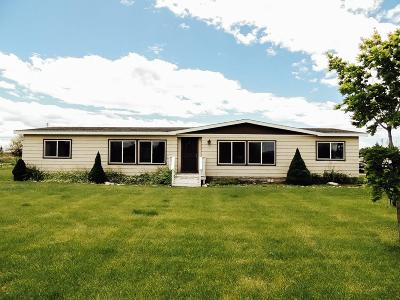 Blackfoot Single Family Home For Sale: 443 W 100 N