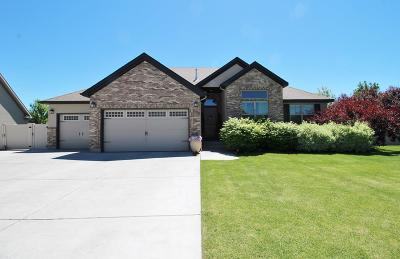 Idaho Falls Single Family Home For Sale: 205 Stillwater Drive