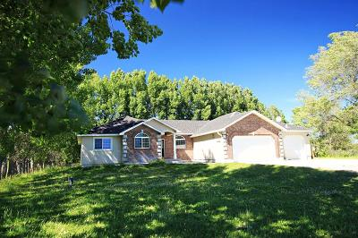 Rigby Single Family Home For Sale: 294 N 4460 E