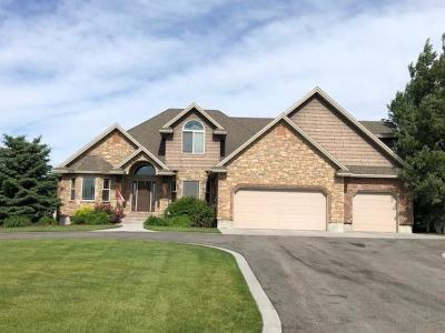 Rexburg Single Family Home For Sale: 3762 Porter Lane
