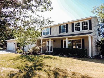 Blackfoot Single Family Home For Sale: 135 Kerr Lane