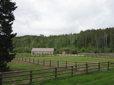 Teton County Single Family Home For Sale: 7700 S 455 W