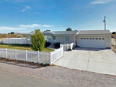Blackfoot Single Family Home For Sale: 410 Ward Drive
