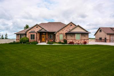 Shelley Single Family Home For Sale: 1108 N 1200 E