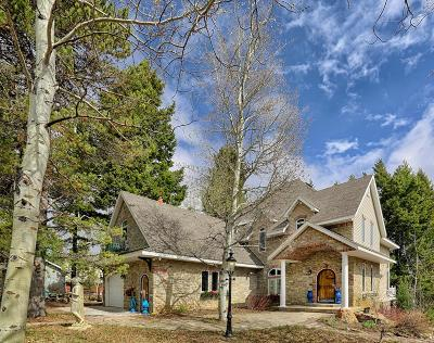 Island Park Single Family Home For Sale: 3889 Bootjack Drive