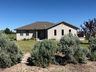 Blackfoot Single Family Home For Sale: 396 N 460 W