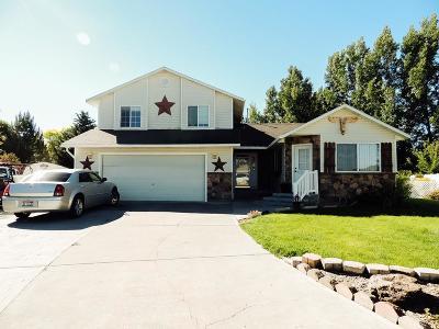 Blackfoot Single Family Home For Sale: 1366 Amaya Circle